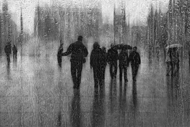 nach dem Regen - fotokunst von Roswitha Schleicher-Schwarz