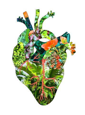 Mein Botanisches Herz - fotokunst von Bianca Green