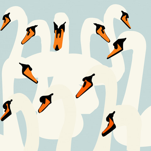 Swan Pattern - fotokunst von Katherine Blower