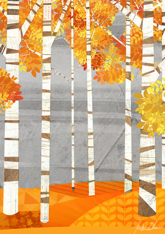 Autumn Woods - fotokunst von Katherine Blower