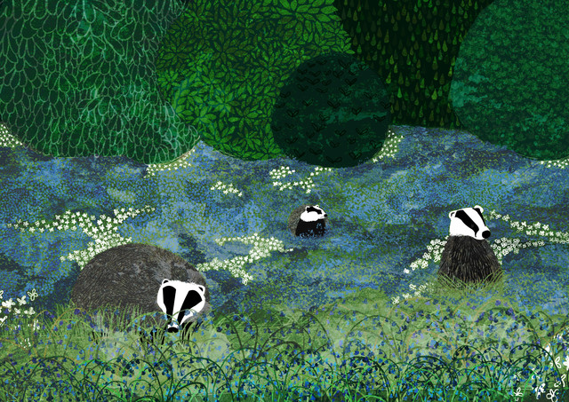 Badgers Amongst the Bluebells - fotokunst von Katherine Blower