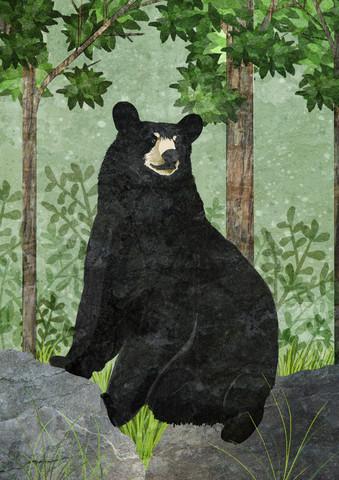 black bear - fotokunst von Katherine Blower
