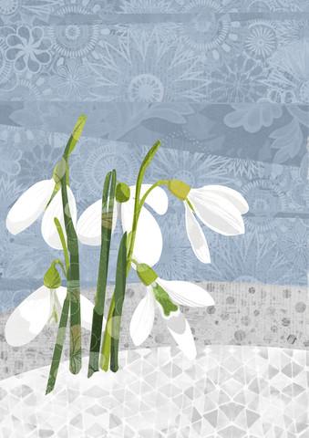 Snowdrop - fotokunst von Katherine Blower