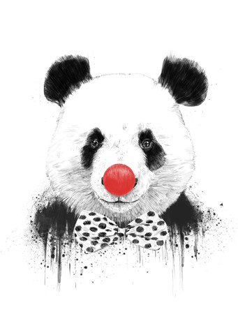 Clown panda - fotokunst von Balazs Solti