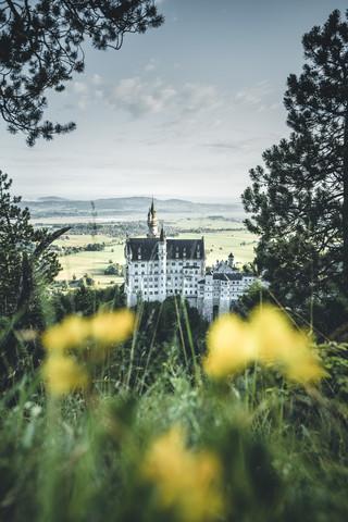 Neuschwanstein Castle - fotokunst von Philipp Steiger