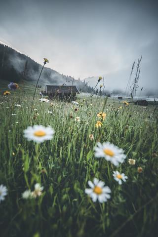 Moody Morning - fotokunst von Philipp Steiger