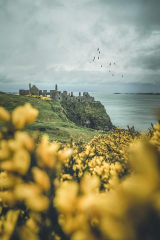 Dunluce Castle - fotokunst von Philipp Steiger
