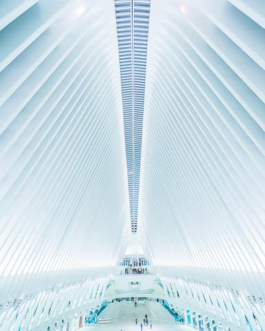 Oculus NYC - fotokunst von Dimitri Luft