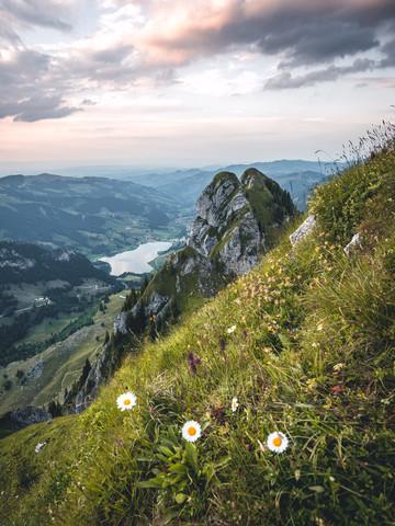Die 3 Gänseblümchen - fotokunst von Niels Oberson