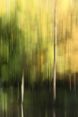 autumn abstract #o8 - fotokunst von Steffi Louis