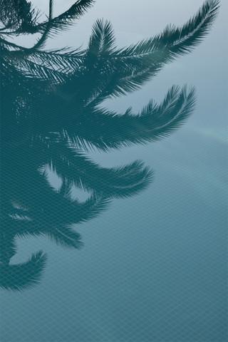 Palms in the Pool - fotokunst von Studio Na.hili
