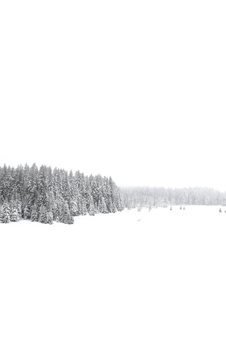 White White Winter 1/2 - fotokunst von Studio Na.hili