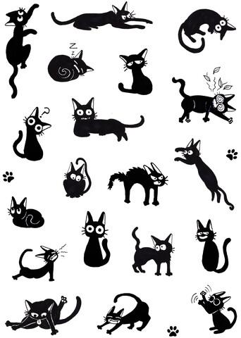 Black cat Moods - fotokunst von Katherine Blower