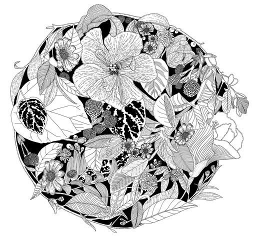 Botanical Circle (Black and White) - fotokunst von Catalina Villegas