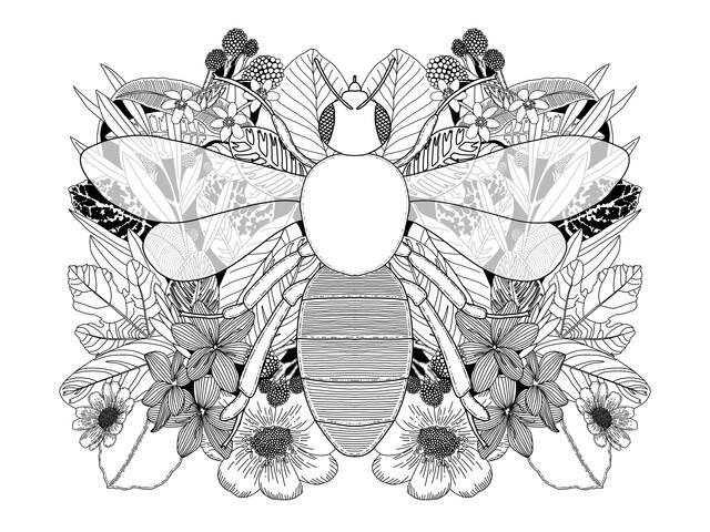 Botanical Bee - fotokunst von Catalina Villegas