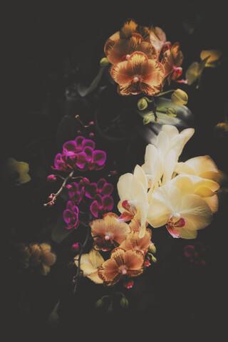 Blumenbouquet - fotokunst von Pascal Deckarm