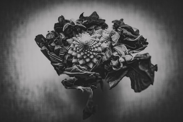 Romanesco - fotokunst von Andrea Hansen