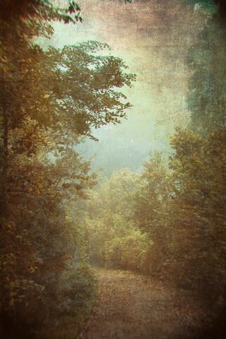 Historischer Weg - fotokunst von Andrea Hansen