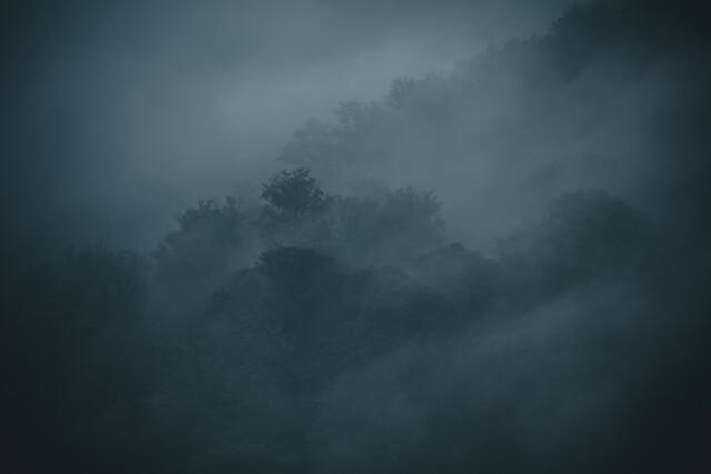 Nebelwald - fotokunst von Franz Sussbauer