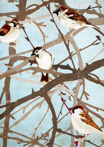 Sparrows - fotokunst von Katherine Blower