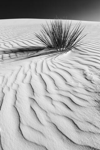 WHITE SANDS Wüstenimpression - fotokunst von Melanie Viola