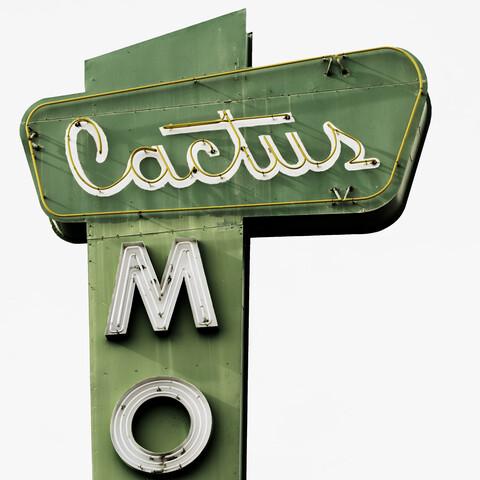 Cactus - fotokunst von Vera Mladenovic