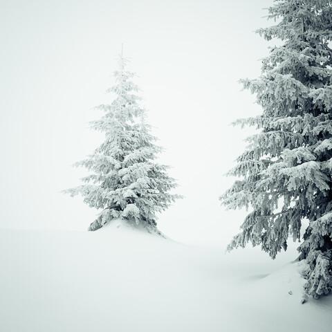Silence - fotokunst von Nicklas Walther