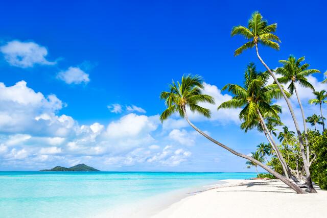 Traumstrand mit Palmen auf Bora Bora in Französisch-Polynesien - fotokunst von Jan Becke