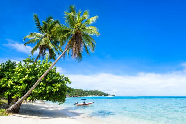 Urlaubsparadies in den Tropen - fotokunst von Jan Becke