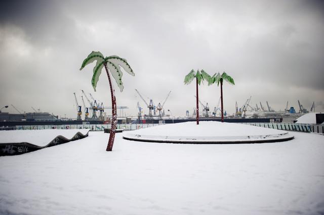 Parc Fiction - fotokunst von Amaar Ujeyl