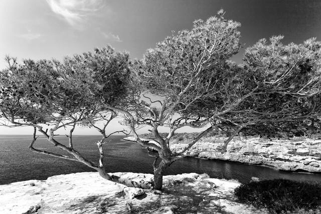 Cala Pi, Mallorca - fotokunst von Angelika Stern