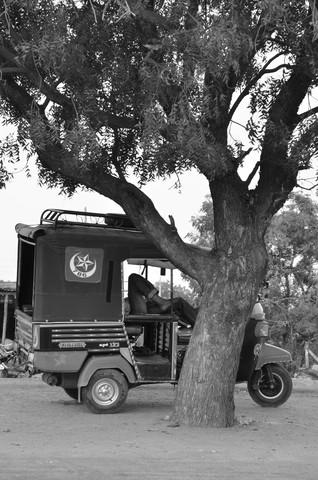 Afternoon Break in Karnataka - fotokunst von Charlotte McGinnis