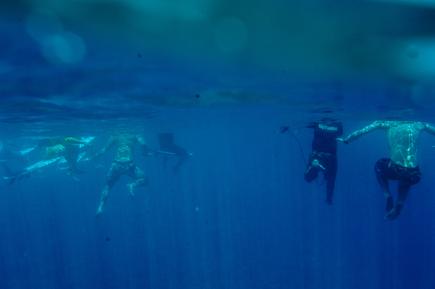 Lars Jacobsen, Surfer warten auf die Welle (Französisch-Polynesien, Australien und Ozeanien)