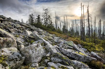Stefan Schurr, Auf dem Lusen im Bayerischen Wald (Deutschland, Europa)