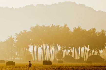Marc Rasmus, Golden Walk (Myanmar, Asien)