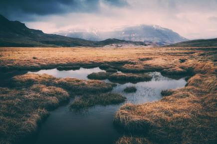 Franz Sussbauer, [:] marshland [:] (Island, Europa)