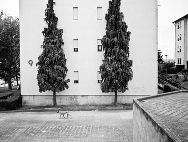 Anna Kress, Porto I (Portugal, Europa)