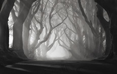 Carsten Meyerdierks, Rays Of Light (Großbritannien, Europa)