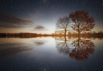 Carsten Meyerdierks, Two Trees (Deutschland, Europa)