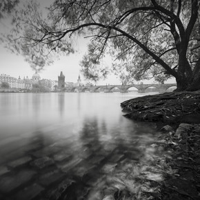 Ronny Behnert, Moldau Karlsbrücke Prag (Tschechische Republik, Europa)