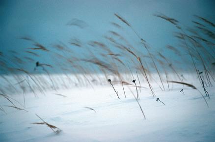 Carsten Wilde, Lettische Winter (Lettland, Europa)