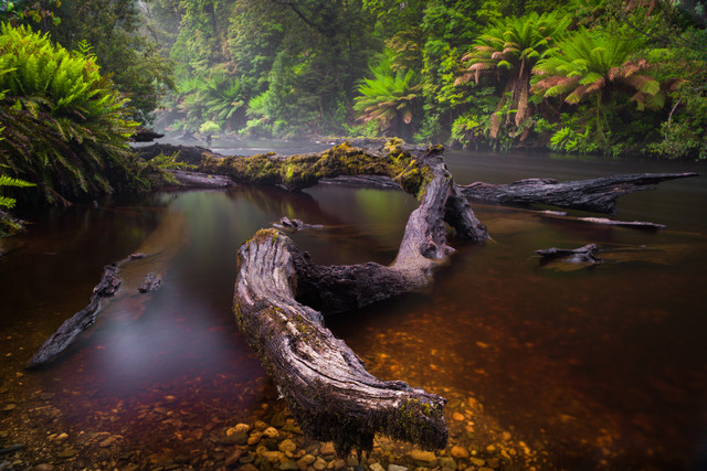 Styx River - Fineart photography by Boris Buschardt