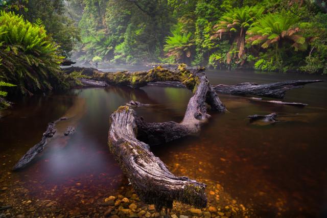 Styx River - Fineart photography by Boris Buschardt