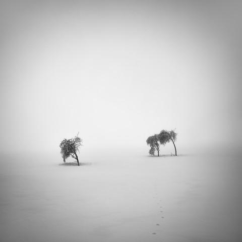 I + II - Fineart photography by Martin Rak
