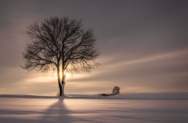 Ray Of Light - Fineart photography by Heiko Gerlicher