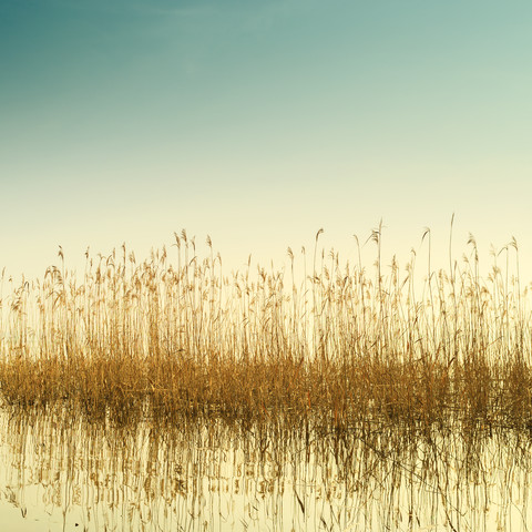 Müggelsee - Fineart photography by Holger Nimtz