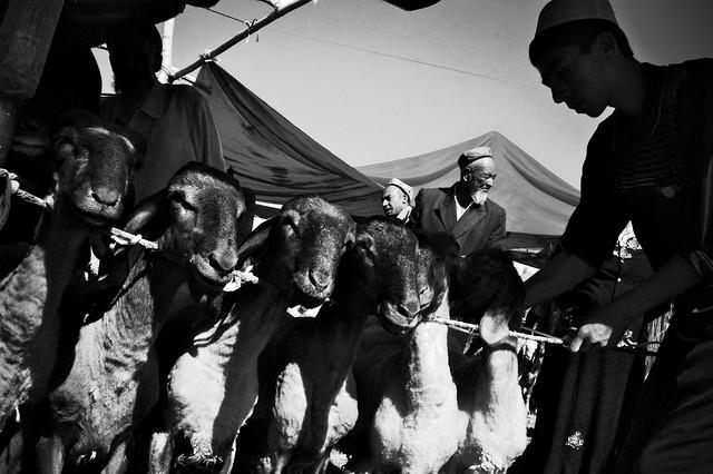 The Kashgar Sunday Market - Fineart photography by Brett Elmer