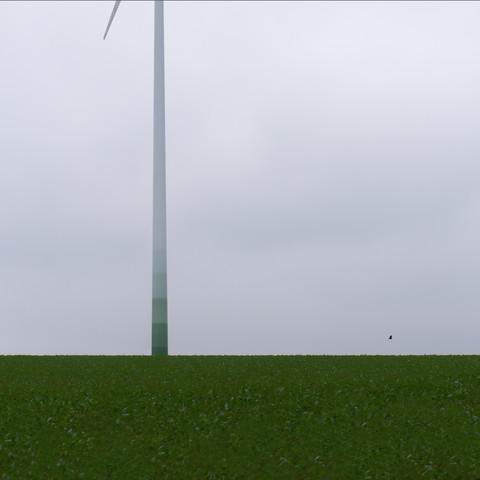 alles grün - Fineart photography by Klaus Lenzen