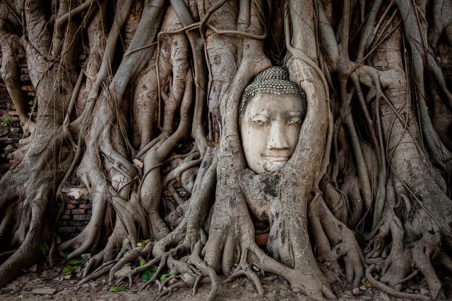 Buddha in Ayutthaya - Fineart photography by Sebastian Rost