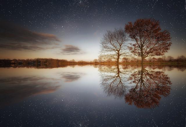 Two Trees - Fineart photography by Carsten Meyerdierks